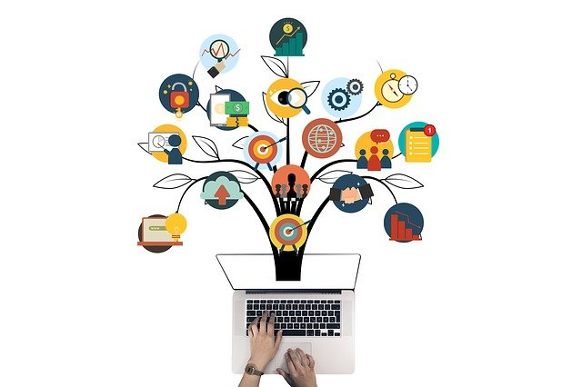 Online tutor and coaching business