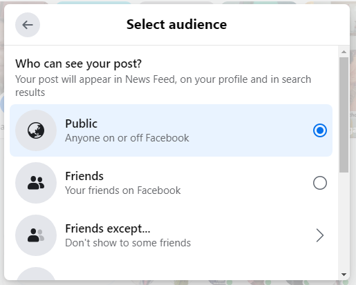 select facebook audience on post